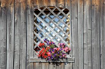 finestra garni sezione contatti